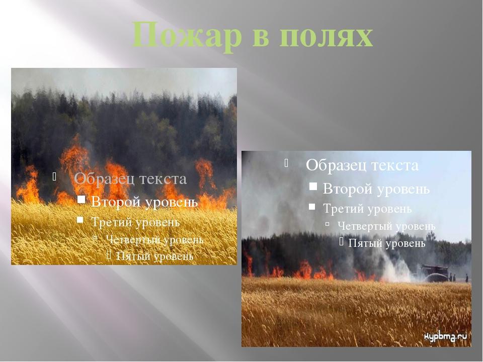 Пожар в полях
