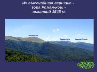 Их высочайшая вершина - гора Роман-Кош - высотой 1545 м.
