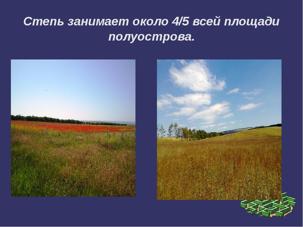 Степь занимает около 4/5 всей площади полуострова.