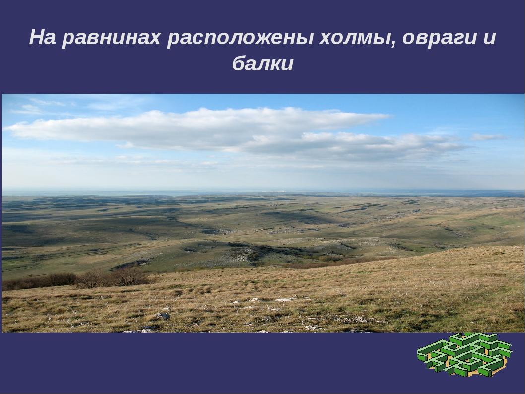 На равнинах расположены холмы, овраги и балки