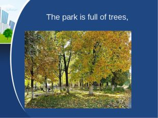 The park is full of trees,