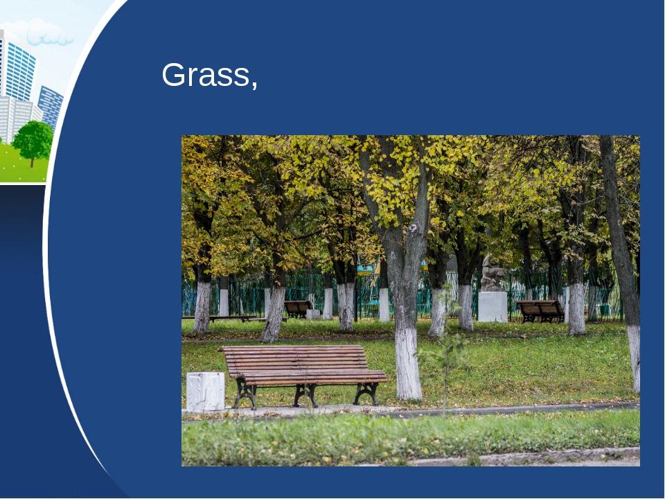 Grass,