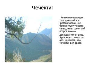 Чечектиг Чечектигге шаандан тура дыка хой чон чурттап чораан.Чок болган улуст