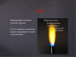 Na+ Окрашивание пламени газовой горелки. Соли и другие соединения натрия окра