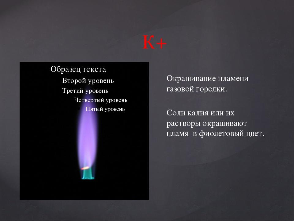 К+ Окрашивание пламени газовой горелки. Соли калия или их растворы окрашивают...