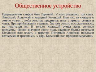 Общественное устройство Прародителем скифов был Таргитай. У него родились три