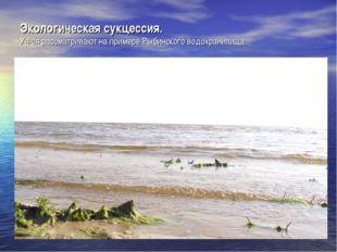 Экологическая сукцессия. Уч-ся рассматривают на примере Рыбинского водохранил