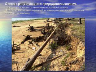 Основы рационального природопользования. Формирование экологического мышления