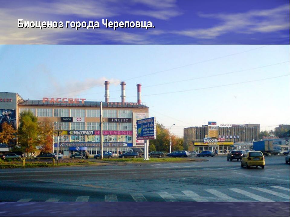 Биоценоз города Череповца.