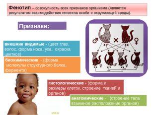 Фенотип – совокупность всех признаков организма (является результатом взаимо