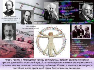 Чтобы прийти к имеющимся теперь результатам, история развития генетики прошла