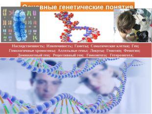 Основные генетические понятия Наследственность; Изменчивость; Гаметы; Соматич
