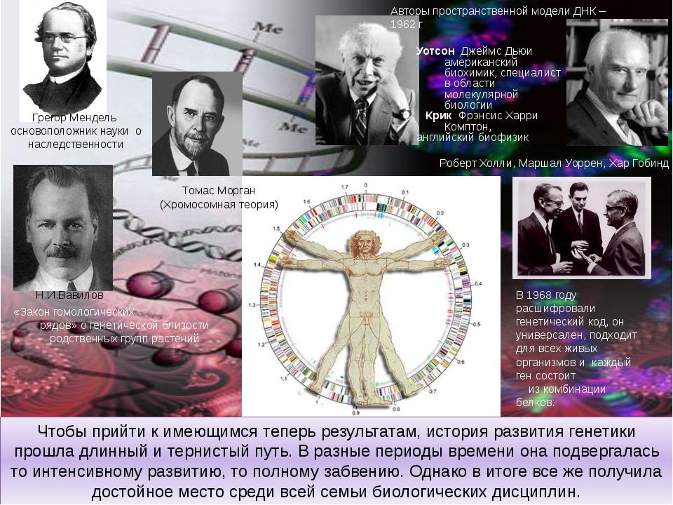 Чтобы прийти к имеющимся теперь результатам, история развития генетики прошла...
