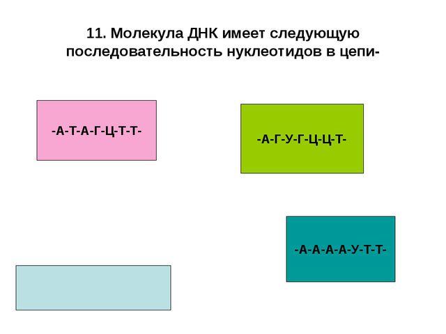 11. Молекула ДНК имеет следующую последовательность нуклеотидов в цепи- -А-Т-...