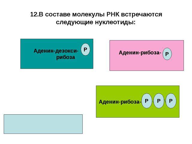 12.В составе молекулы РНК встречаются следующие нуклеотиды: Аденин-дезокси- р...