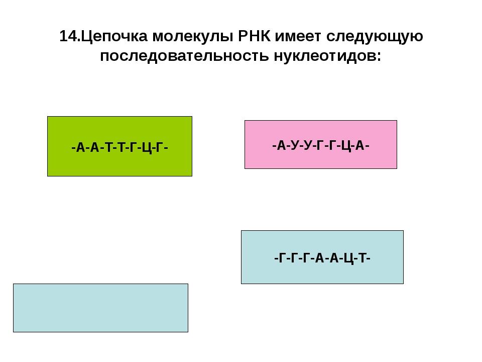 14.Цепочка молекулы РНК имеет следующую последовательность нуклеотидов: -А-А-...