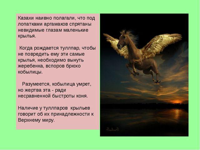 Казахи наивно полагали, что под лопатками аргамаков спрятаны невидимые глазам...