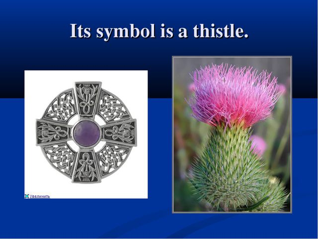Its symbol is a thistle.