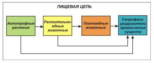hello_html_48c9c7ca.jpg