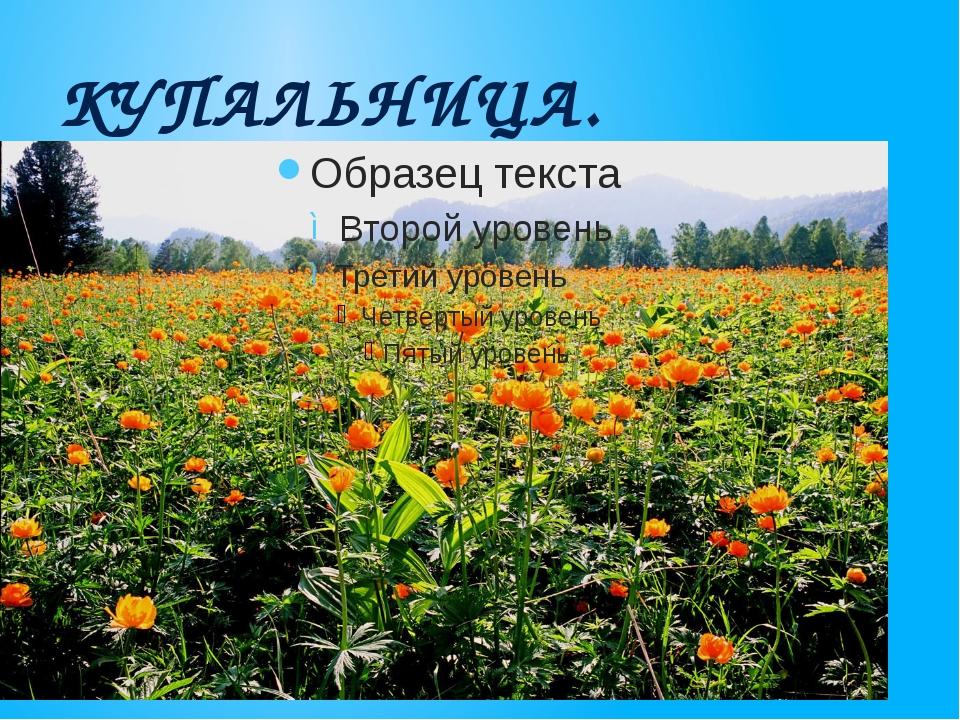КУПАЛЬНИЦА.