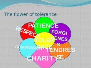 The flower of tolerance PATIENCE FORGIVENESS TENDRESSE RESPECT CHARITY COMPA