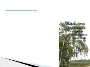 общеславянское слово, общее у болгар, словаков, поляков, украинцев, белорусо