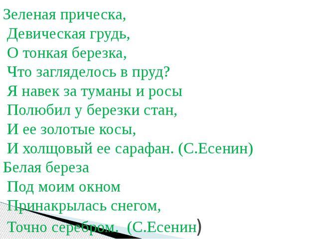 Зеленая прическа, Девическая грудь, О тонкая березка, Что загляделось в пруд...