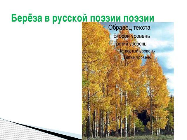Берёза в русской поэзии поэзии