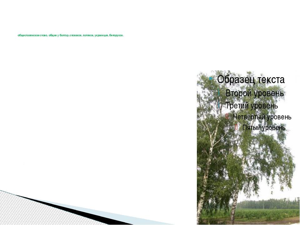 общеславянское слово, общее у болгар, словаков, поляков, украинцев, белорусо...