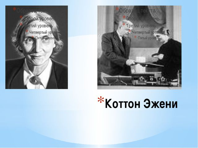 Коттон Эжени