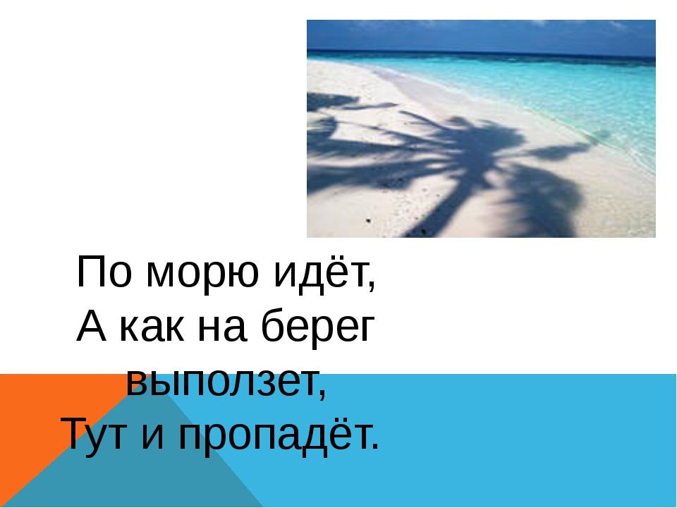 По морю идёт, А как на берег выползет, Тут и пропадёт.