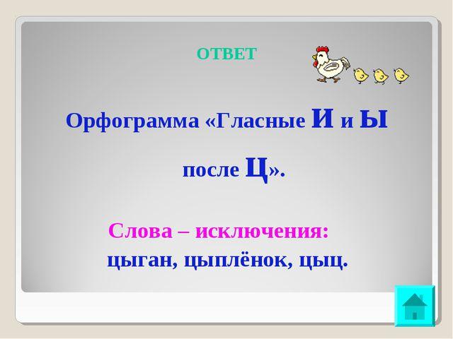 ОТВЕТ Орфограмма «Гласные и и ы после ц». Слова – исключения: цыган, цыплёнок...