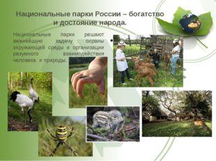 Национальные парки России – богатство и достояние народа. Национальные парки