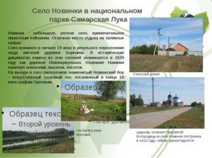 Село Новинки в национальном парке Самарская Лука Сельский домик Церковь Успен