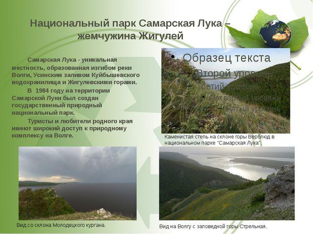 Национальный парк Самарская Лука – жемчужина Жигулей Самарская Лука - уникал...