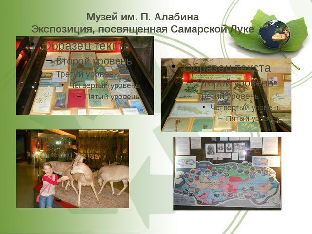 Музей им. П. Алабина Экспозиция, посвященная Самарской Луке