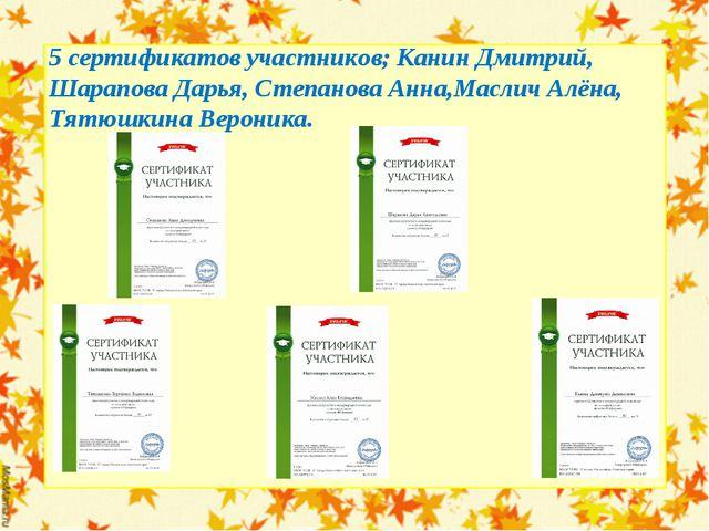 5 сертификатов участников; Канин Дмитрий, Шарапова Дарья, Степанова Анна,Масл...