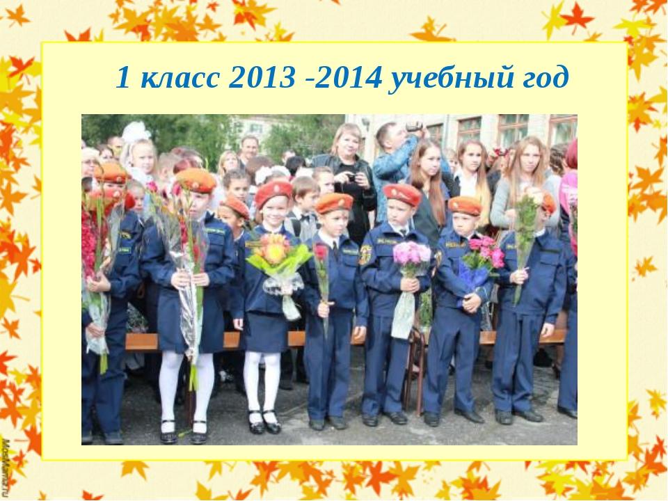 1 класс 2013 -2014 учебный год