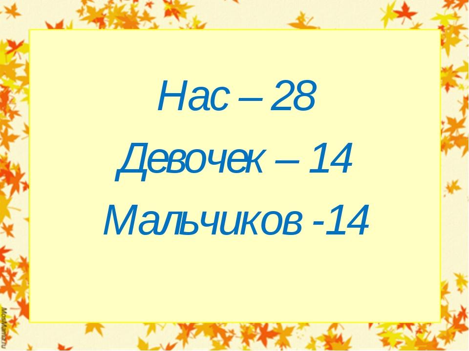 Нас – 28 Девочек – 14 Мальчиков -14