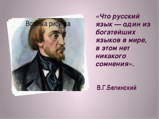 «Что русский язык — один из богатейших языков в мире, в этом нет никакого сом...