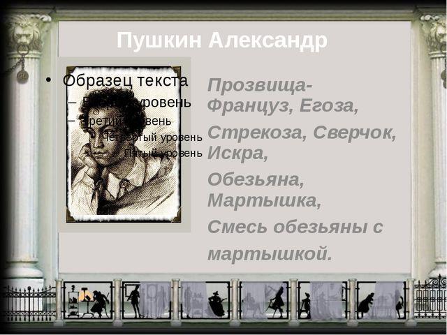 Пушкин Александр Прозвища- Француз, Егоза, Стрекоза, Сверчок, Искра, Обезьяна...
