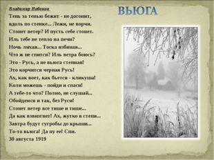 Владимир Набоков  Тень за тенью бежит - не догонит, вдоль по стенке... Лежи,