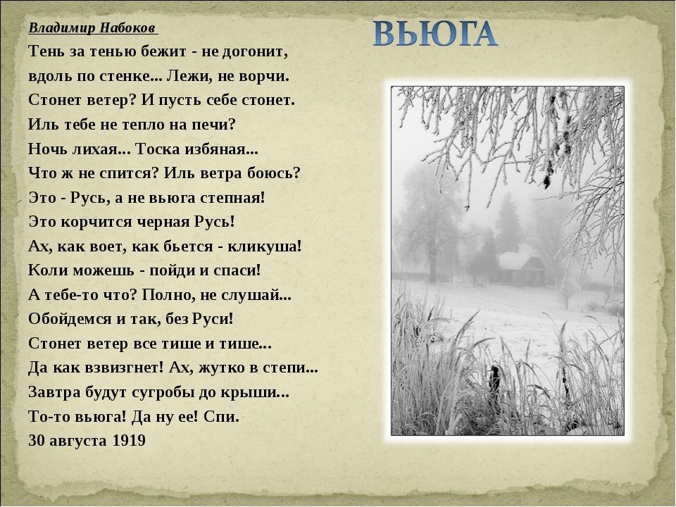 Владимир Набоков  Тень за тенью бежит - не догонит, вдоль по стенке... Лежи,...