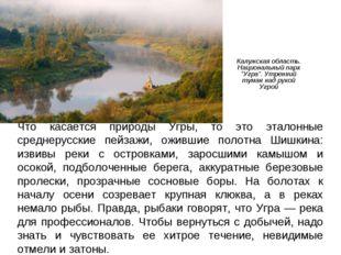 """Калужская область. Национальный парк """"Угра"""". Утренний туман над рукой Угрой Ч"""