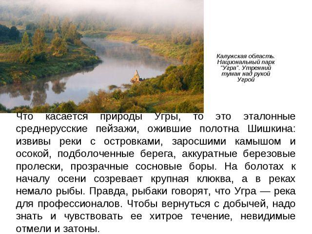 """Калужская область. Национальный парк """"Угра"""". Утренний туман над рукой Угрой Ч..."""