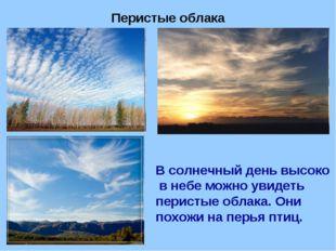 Перистые облака В солнечный день высоко в небе можно увидеть перистые облака.