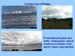 Слоистые облака В пасмурный день все небо покрывают серые слоистые облака. Он