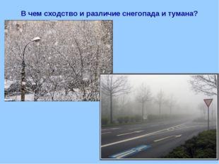 В чем сходство и различие снегопада и тумана?