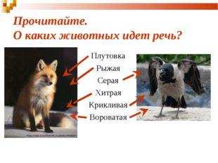 Прочитайте. О каких животных идет речь? Плутовка Рыжая Серая Хитрая Крикливая