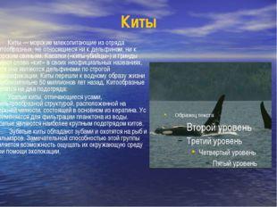 Киты Киты — морские млекопитающие из отряда китообразных, не относящиеся ни к
